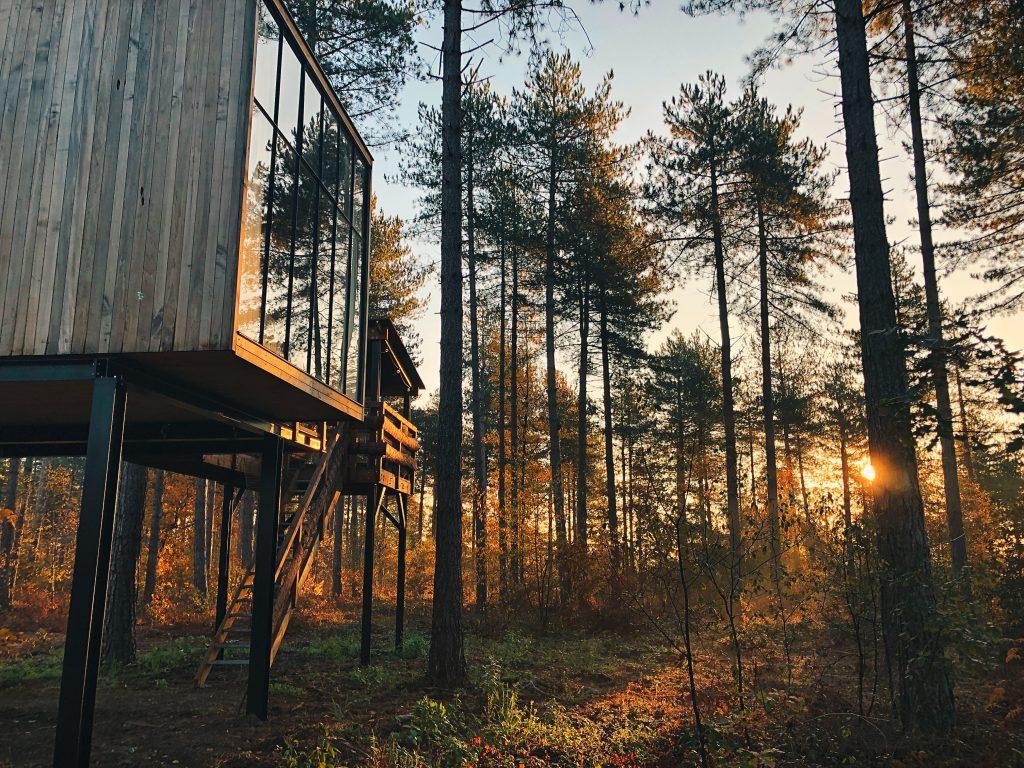 Treetop Cabin tijdens zonsopgang