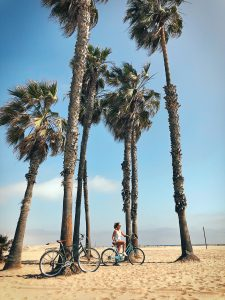 Venice Boardwalk fietstocht, Los Angeles