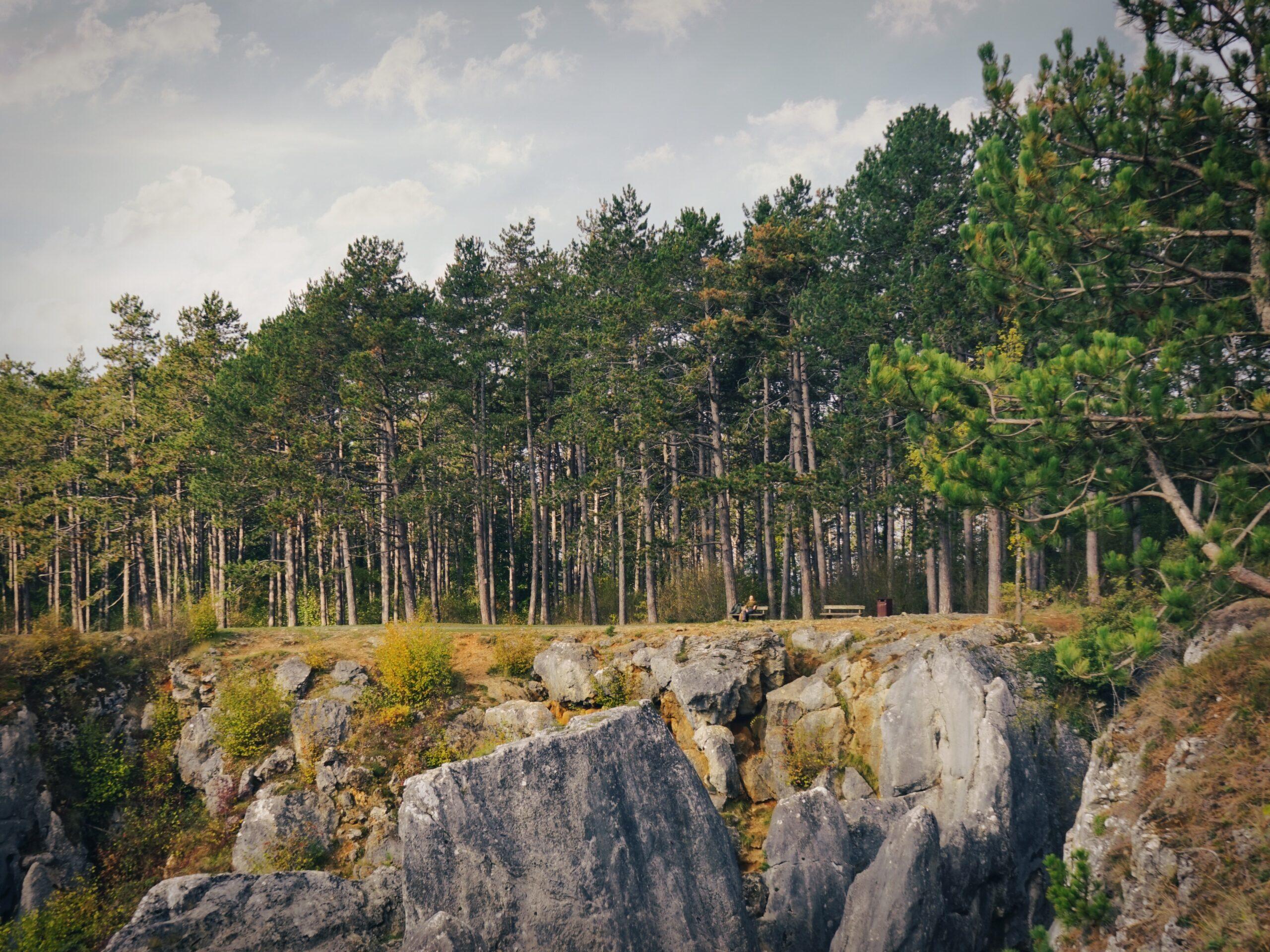 Fondry des Chiens aan de rand van de bossen nabij Nismes