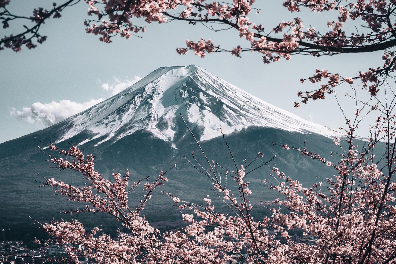 Ontdek de Japanse cultuur met gezelschapsspellen