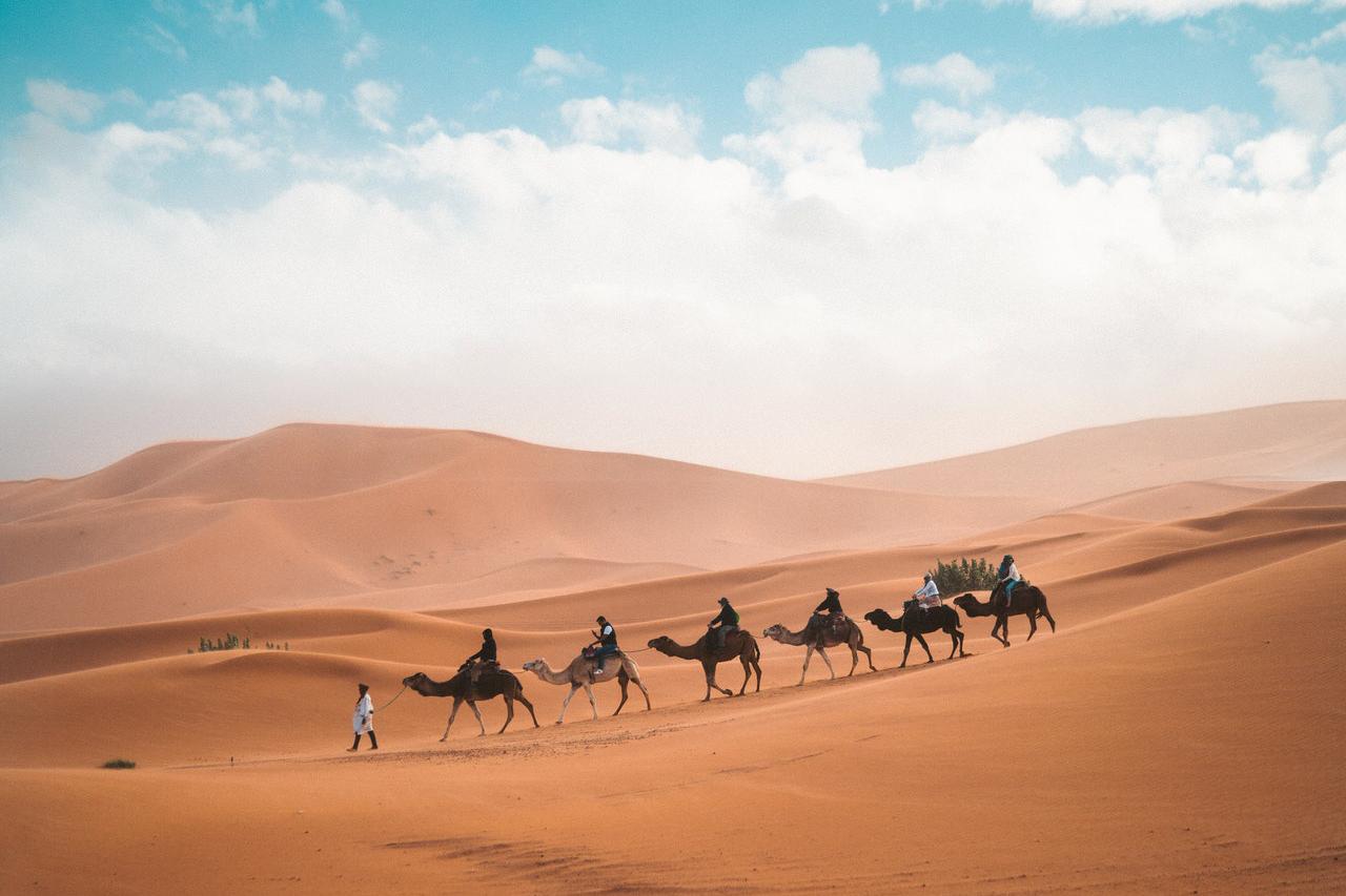 De Afrikaanse woestijn